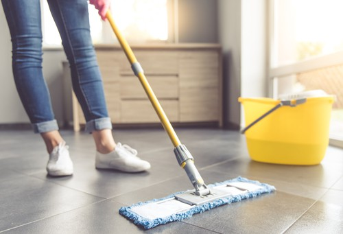 cleaning-program
