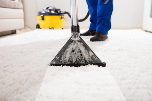 deep-clean-the-carpets