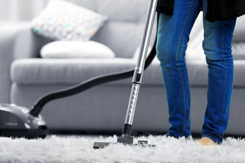 What Are The Kind of Bacteria in Carpet?